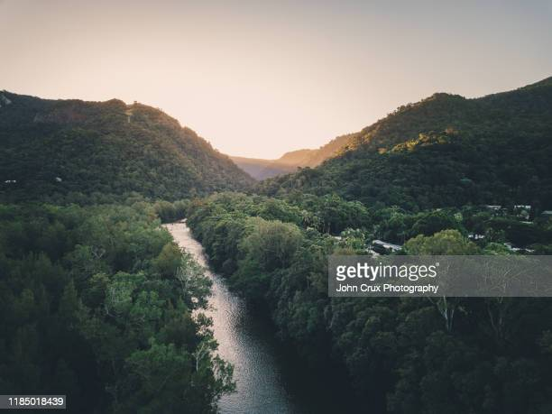 barron river - cairns stock pictures, royalty-free photos & images