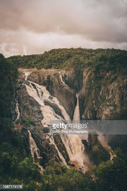 barron waterfall - クランダ ストックフォトと画像