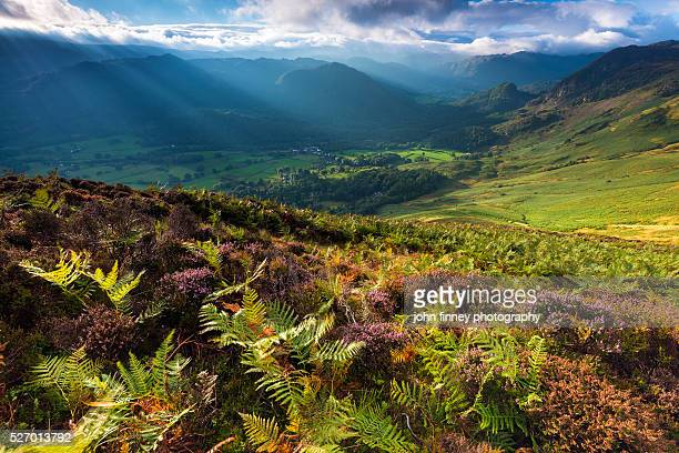 Barrowdale valley from above with Autumn Bracken. Lake District National park. UK. Europe.