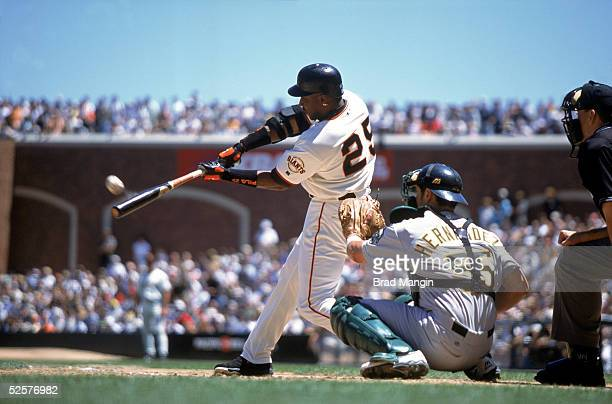 Barry Bonds of the San Francisco Giants connects with the pitch during the season game at Pac Bell Park in San Francisco California on June 16 2001