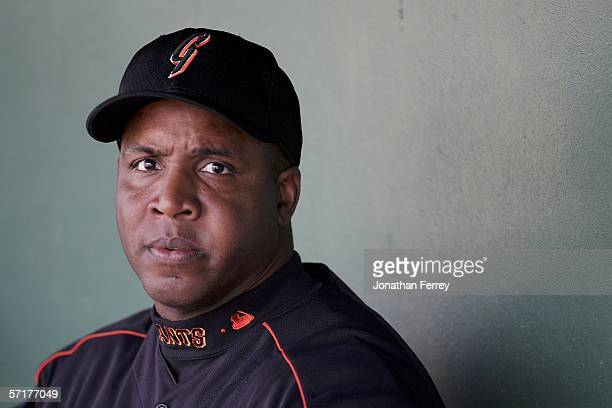Barry Bonds the San Francisco Giants sits in the dugout during a Spring Training Cactus League game against the Colorado Rockies on March 24 2006 at...