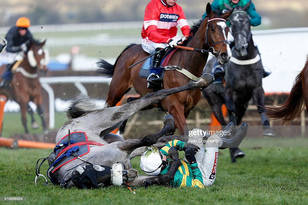 Barry Geraghty falls from Campeador at the last in The Fred Winter Juvenile Handicap Hurdle Race, before both getting up unhurt, at Cheltenham racecourse on March 16, 2016 in Cheltenham, England.
