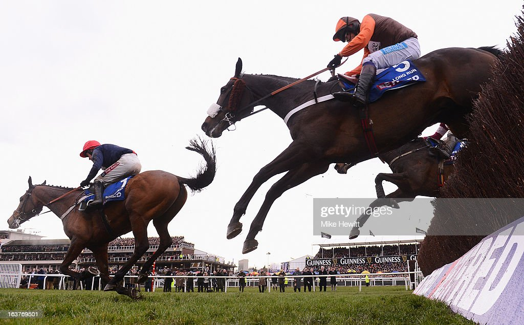 Barry Geraghty on Bob's Worth leads Long Run and Sir des Champs over the last on their way to victory in the Chentenham Gold Cup Steeple Chase at Cheltenham Racecourse on March 15, 2013 in Cheltenham, England.