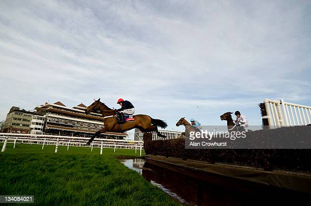 Barry Geraghty riding Bobs Worth clear the water jump on their way to winning The Fuller's London Pride Novices' Steeple Chase at Newbury racecourse...