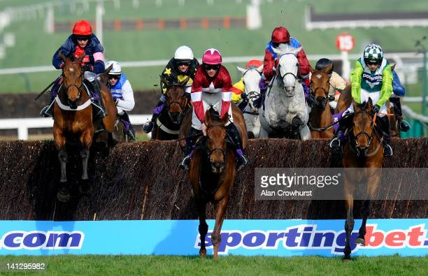 Barry Geraghty riding Bobs Worth on their way to winning The RSA Steeple Chase on ladies day during day two of the Cheltenham Festival at Cheltenham...