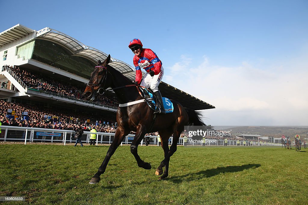 Barry Geraghty riding Sprinter Sacre celebrates victory in the Queen Mother Champion Steeple Chase during Ladies Day at Cheltenham Racecourse on March 13, 2013 in Cheltenham, England.