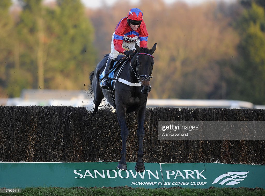 Barry Geraghty riding Sprinter Sacre clear the last to win The Sportingbet Tingle Creek Chase at Sandown racecourse on December 08, 2012 in Esher, England.