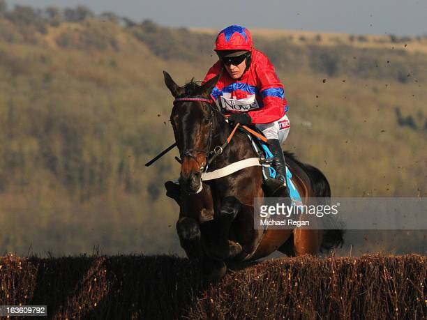 Barry Geraghty riding Sprinter Sacre on their way to victory in the Queen Mother Champion Steeple Chase during Ladies Day at Cheltenham Racecourse on...