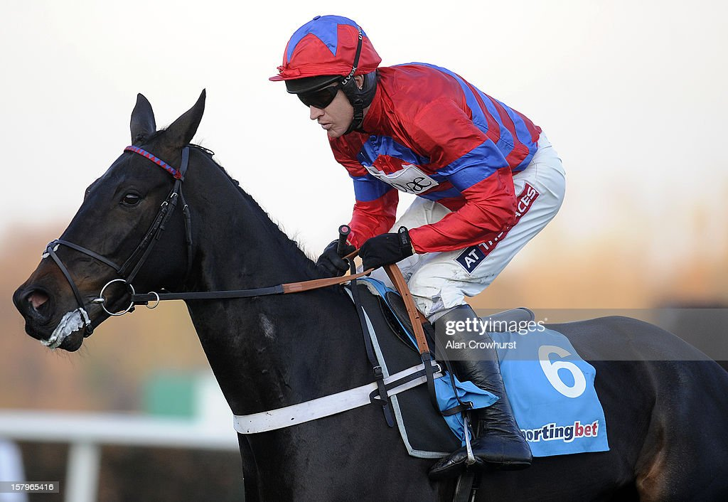 Barry Geraghty riding Sprinter Sacre on their way to winning The Sportingbet Tingle Creek Chase at Sandown racecourse on December 08, 2012 in Esher, England.