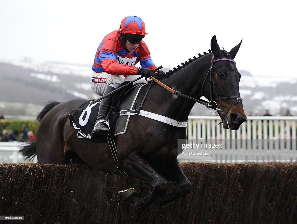 Barry Geraghty riding Sprinter Sacre on their way to winning The Victor Chandler Steeple Chase at Cheltenham racecourse on January 26, 2013 in Cheltenham, England.