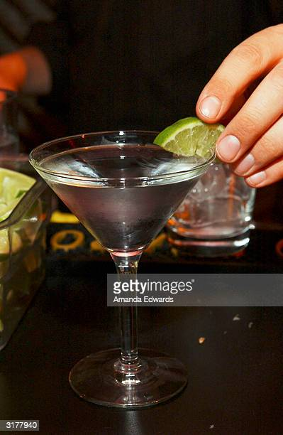 A bartender mixes drinks with Van Gogh Vodka at the ABC 'My Wife and Kids' Party on March 28 2004 at Bliss in West Hollywood California