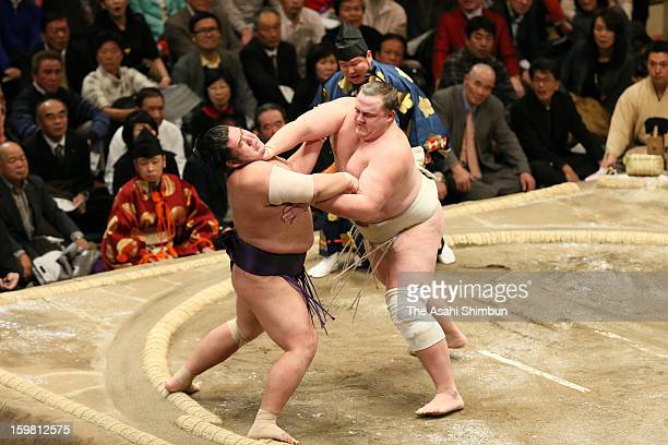 Baruto pushes out Tochiozan to win in day seven of the Grand Sumo New Year Tournament at Ryogoku Kokugikan on January 19 2013 in Tokyo Japan