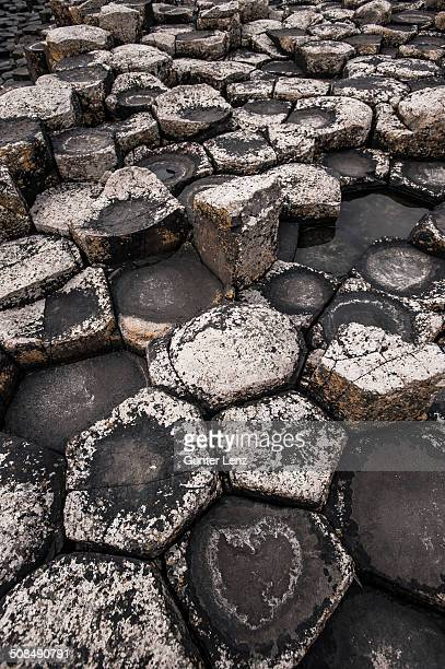 Basaltic rocks on the shore with waves, Giant's Causeway, Coleraine, Northern Ireland, United Kingdom, Europe