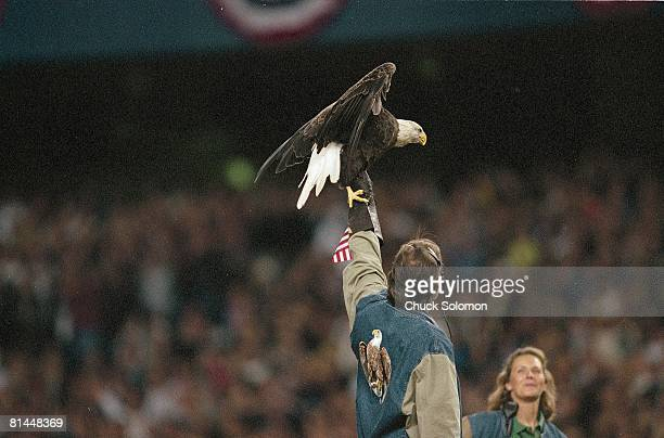 Baseball AL playoffs 9/11 tribute with bald eagle before Oakland Athletics vs New York Yankees game Bronx NY