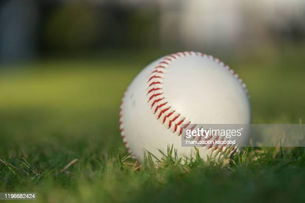 baseball ball on the green lawn - baseball - fotografias e filmes do acervo