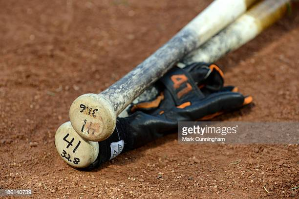 Baseball bats and batting gloves of Victor Martinez of the Detroit Tigers are shown during workouts prior to the American League Championship Series...