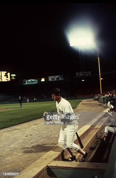 Boston Red Sox Carl Yastrzemski going up dugout steps before at bat during game vs Baltimore Orioles at Fenway Park Boston MA CREDIT John Iacono