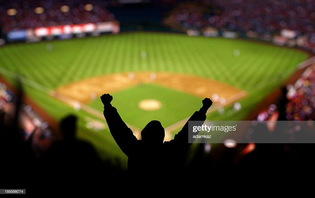 Emoción de béisbol : Foto de stock