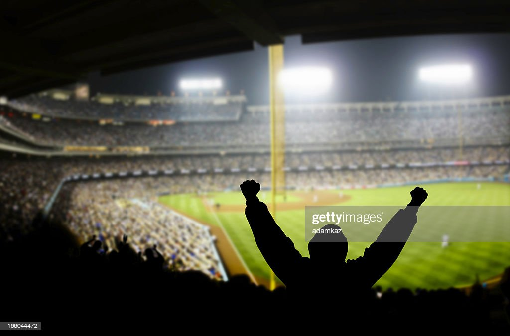 Baseball Excitement : Stock Photo