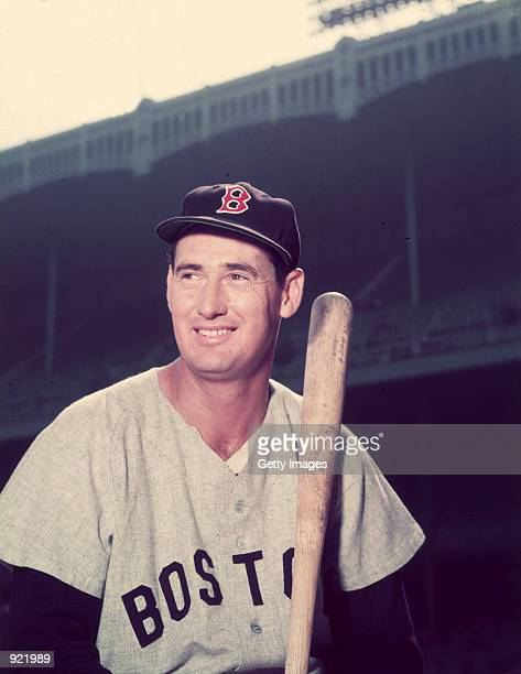 Baseball legend Ted Williams of the Boston Red Sox holds a bat circa 1955 The 83yearold Williams who was the last major league player to bat 400 when...
