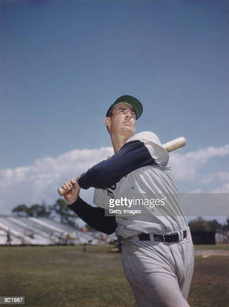 Baseball legend Ted Williams of the Boston Red Sox swings a bat in this portrait circa 1955 The 83yearold Williams who was the last major league...