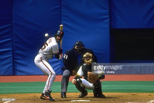 San Francisco Giants Barry Bonds in action at bat vs Pittsburgh Pirates San Francisco CA 4/10/1993 CREDIT Ronald C Modra