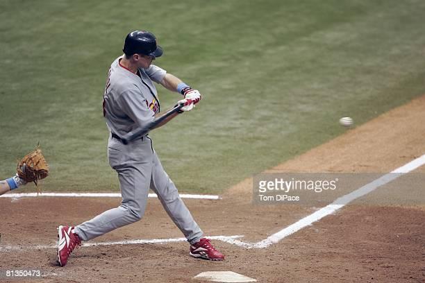 Baseball St Louis Cardinals Scott Seabol in action at bat vs Tampa Bay Devil Rays St Petersburg FL 6/19/2005
