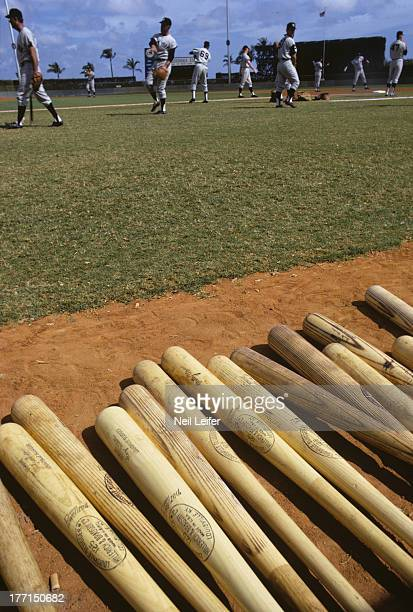 View of bats on field during New York Yankees spring training warmups at Fort Lauderdale Stadium Equipment Fort Lauderdale FL CREDIT Neil Leifer
