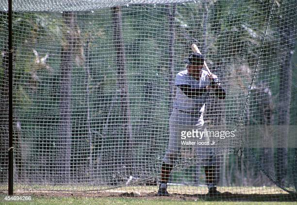View of Detroit Tigers player taking batting practice during spring training workout Florida 3/19/1969 3/25/1969 CREDIT Walter Iooss Jr