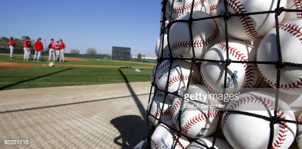 Baseballs are seen in a net for the Boston Red Sox during morning workouts on February 20 2005 at the Boston Red Sox Minor League Spring Training...