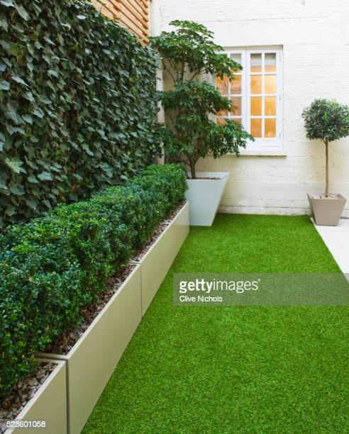 Basement garden in Montague Square, London