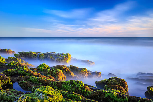 Basham Beach Sunset