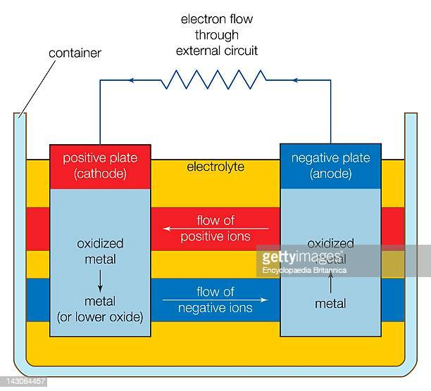 Basic Components Of An Electrochemical Cell