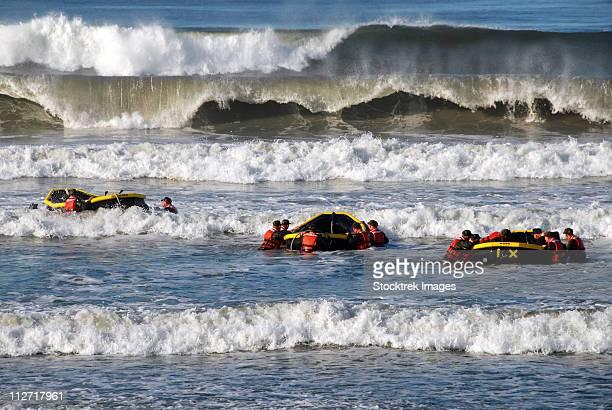 basic underwater demolition/seal students participate in a surf passage training exercise. - navy seals de los estados unidos fotografías e imágenes de stock