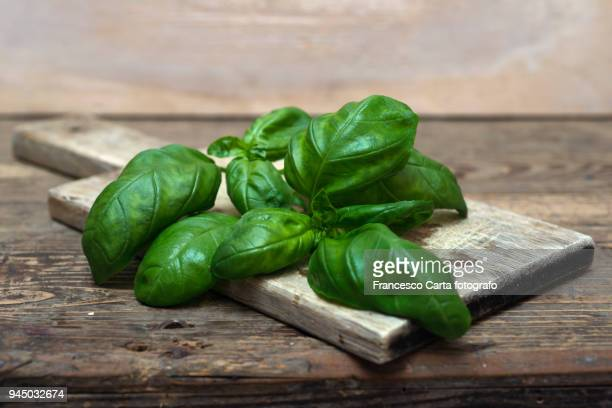 basil - basil stock pictures, royalty-free photos & images