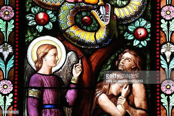 basilica notre-dame of geneva. stained glass window. adam and eve driven from paradise. - adam and eve stock pictures, royalty-free photos & images