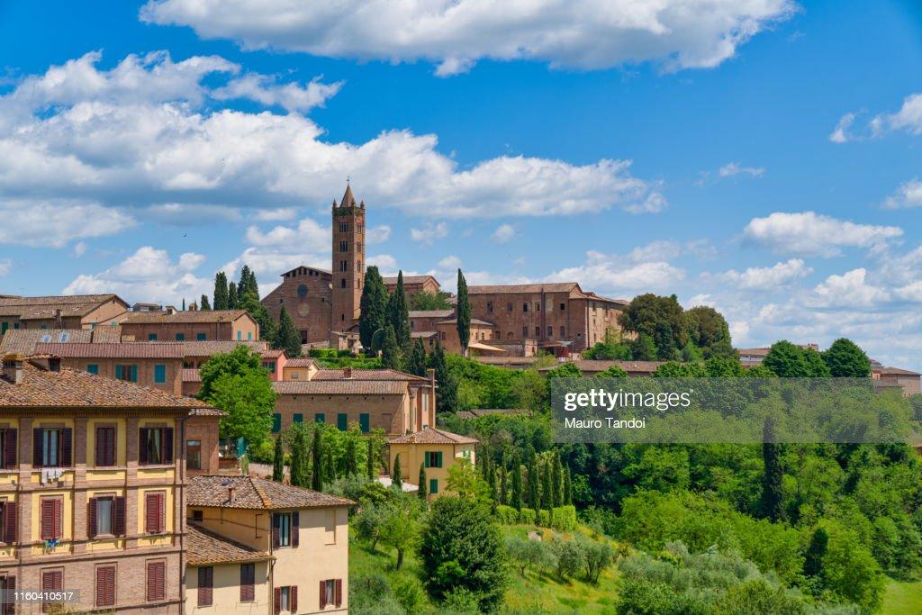 "Basilica of ""Santa Maria dei Servi"", Siena, Tuscany : Foto stock"