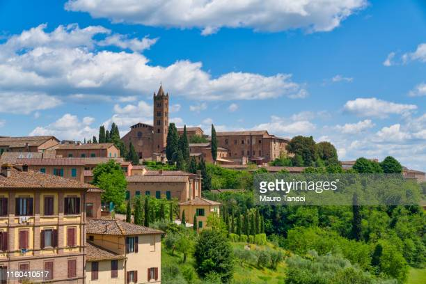 "basilica of ""santa maria dei servi"", siena, tuscany - mauro tandoi stock pictures, royalty-free photos & images"