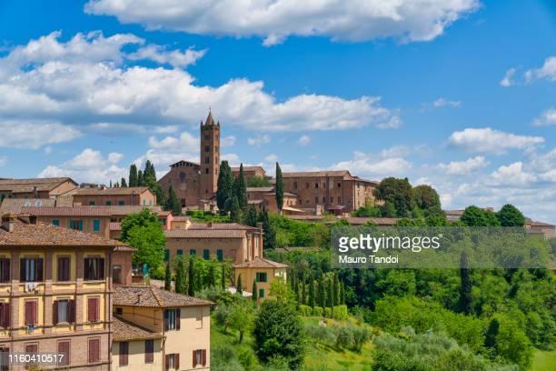 "basilica of ""santa maria dei servi"", siena, tuscany - mauro tandoi foto e immagini stock"