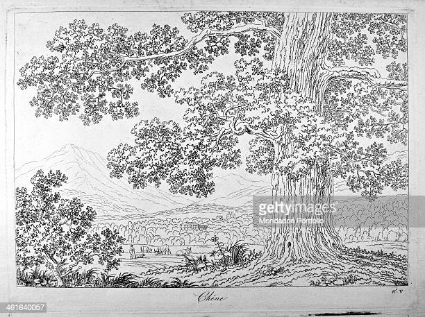 Basis for learning how to draw the natural landscape by Philippe Hackert 1801 1802 19th Century etching Italy Lombardy Milan Brera Accademy of Fine...