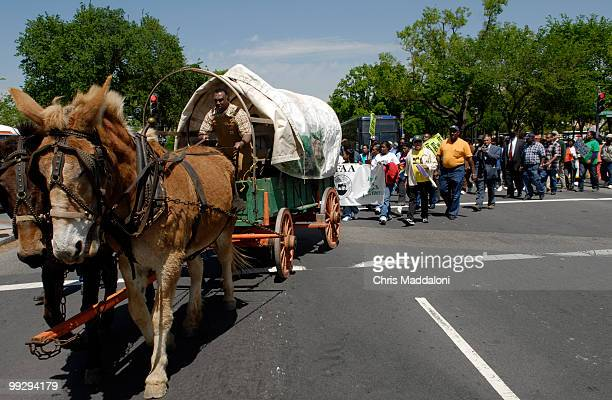 Baskerville, Va., farmer and National Black Farmers Association president John Boyd leads demonstrators in his carriage to find their Congressional...