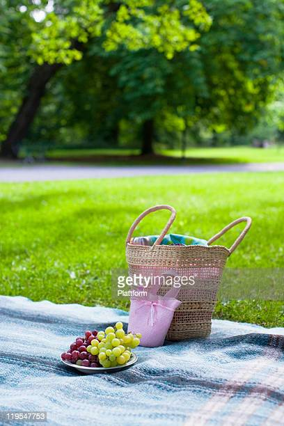 Basket and plate with grapes on blanket in park