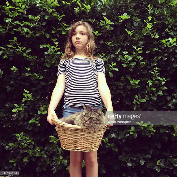 basket cat and girl - hairy little girls stock photos and pictures