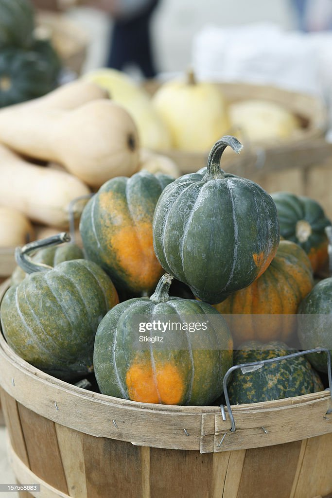 Basket filled with organic acorn squash : Stock Photo