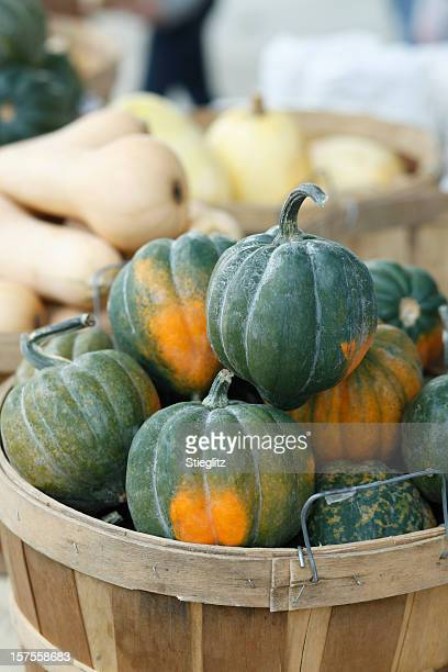 Basket filled with organic acorn squash