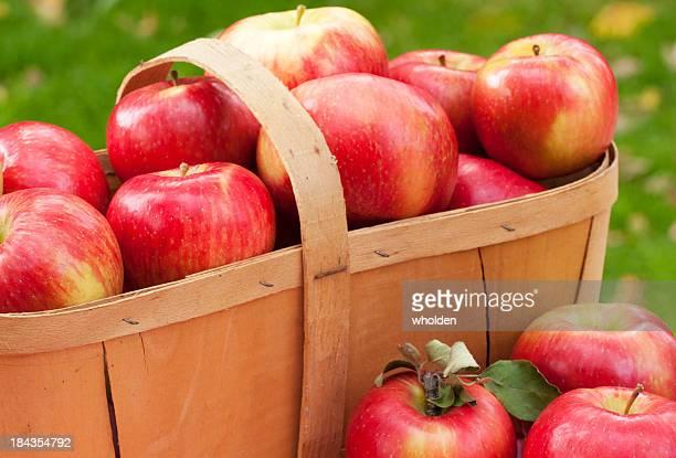 Äpfel und Obstkorb