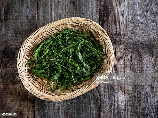 Basket of arugula salad leaves