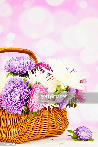 Basket of Beautiful Spring Flowers