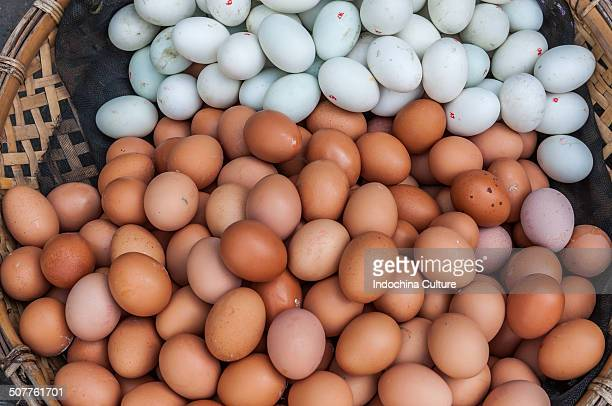 A basket of duck eggs and chicken eggs