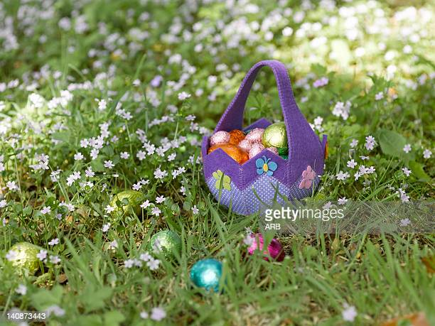 basket of easter eggs in grass - chasse aux oeufs de paques photos et images de collection